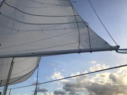 Beautiful new sails.